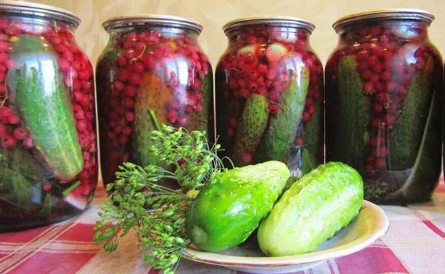 Самый вкусный рецепт приготовления огурцов с красной смородиной без стерилизации на 3 литра