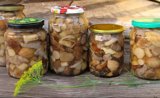 Боровики на зиму – солим грибы в банки для хранения