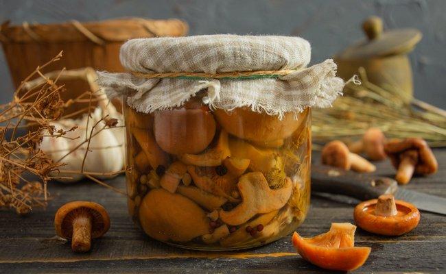 Классический рецепт засолки рыжиков холодным способом на зиму с листьями хрена