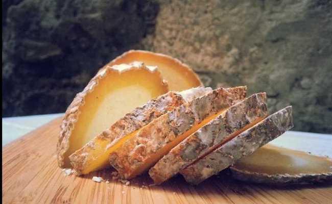 Дамбалхачо – всё о популярном грузинском плесневом сыре